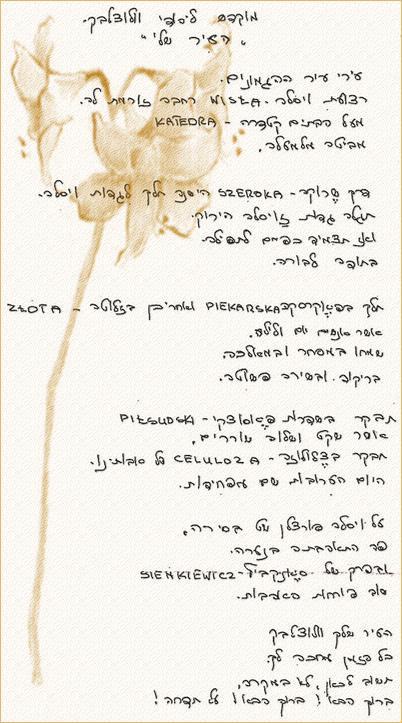 Wiersz po hebrajsku
